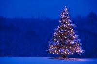 Navidades nevadas. ¡Felices Fiestas!